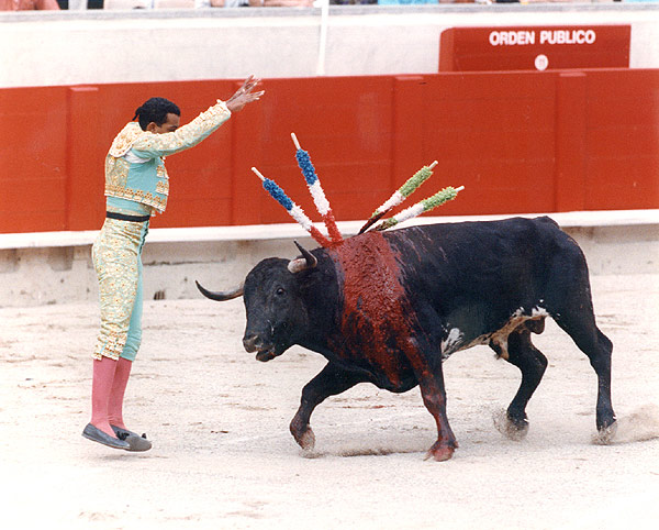 Bullfighting.jpg
